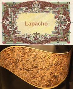 lapacho-ceaiul-incasilor