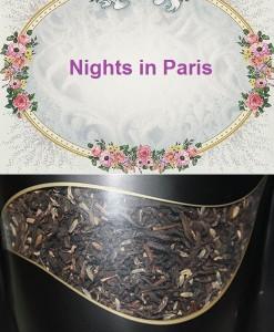 nights in paris site