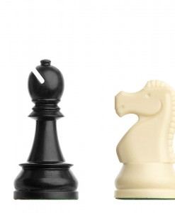 10195 DGT Plastic Chess Pieces