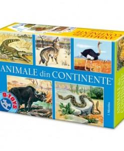 joc_colectiv_animale_din_continente-71750